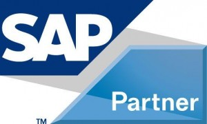 Main Sail SAP Partner